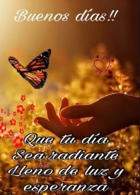 saludos de buenos dias con mariposas