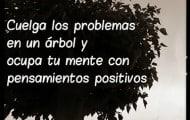 Cuelga-los-problemas-en-un-árbol-y-ocupa-tu-mente-con-pensamientos-positivos