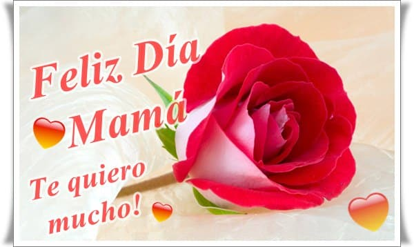 feliz dia de la madre2