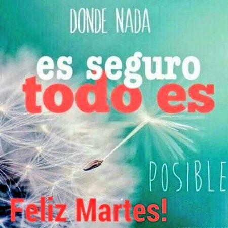 feliz martes mensaje positivo