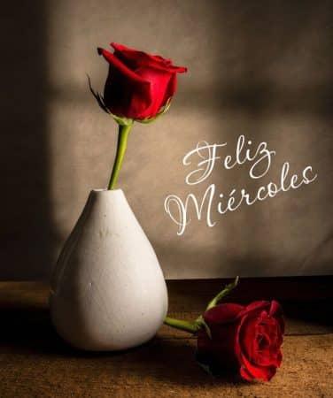 feliz miercoles flores