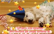 feliz-año-nuevo2