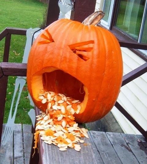 calabaza halloween con semillas
