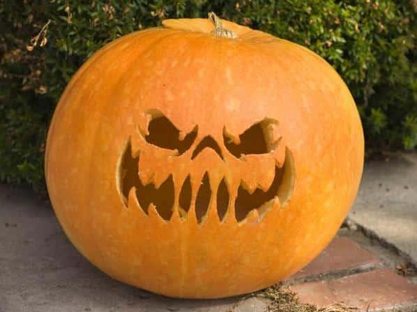 mas ideas para decorar calabazas de halloween 05